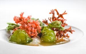 Alghe, scampi e calamari